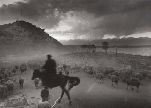 Kirgisische Schafhirten am Issyk-Kul
